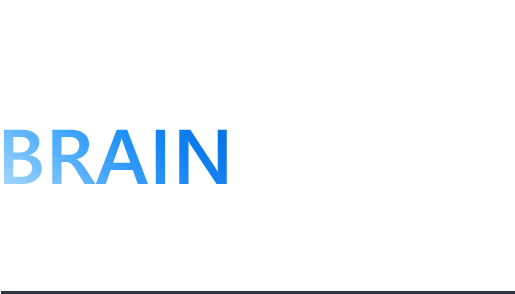 KOREA INSTITUTE OF BRAIN SCIENCE